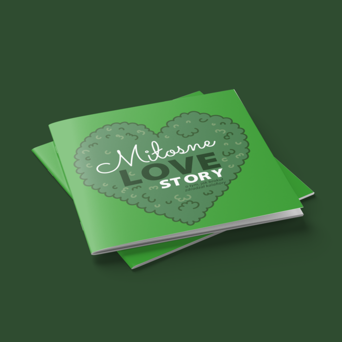 Miłosne love story